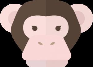 fukugyou-bbs-chimpanzee