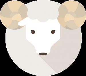 fukugyou-bbs-sheep